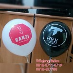 Balon Print T-REX Family Karaoke